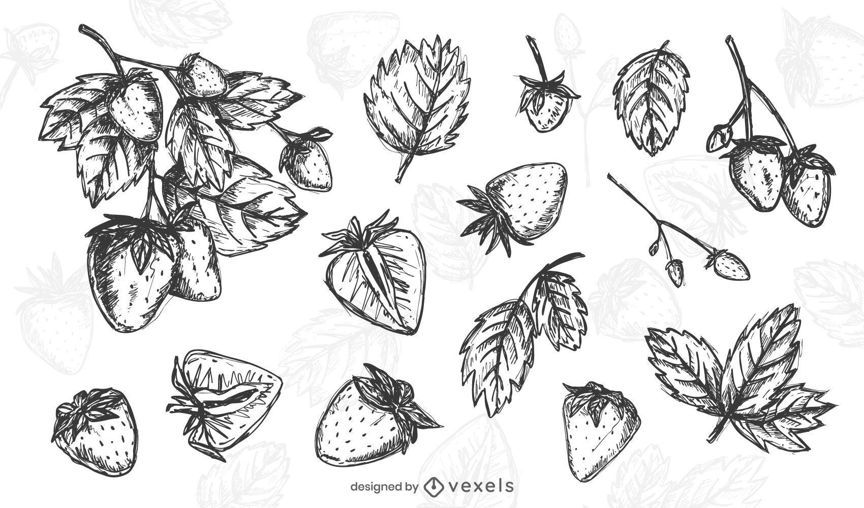 Conjunto de fresa dibujado a mano
