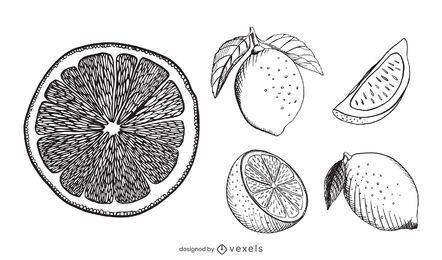 Conjunto de dibujado a mano de limón