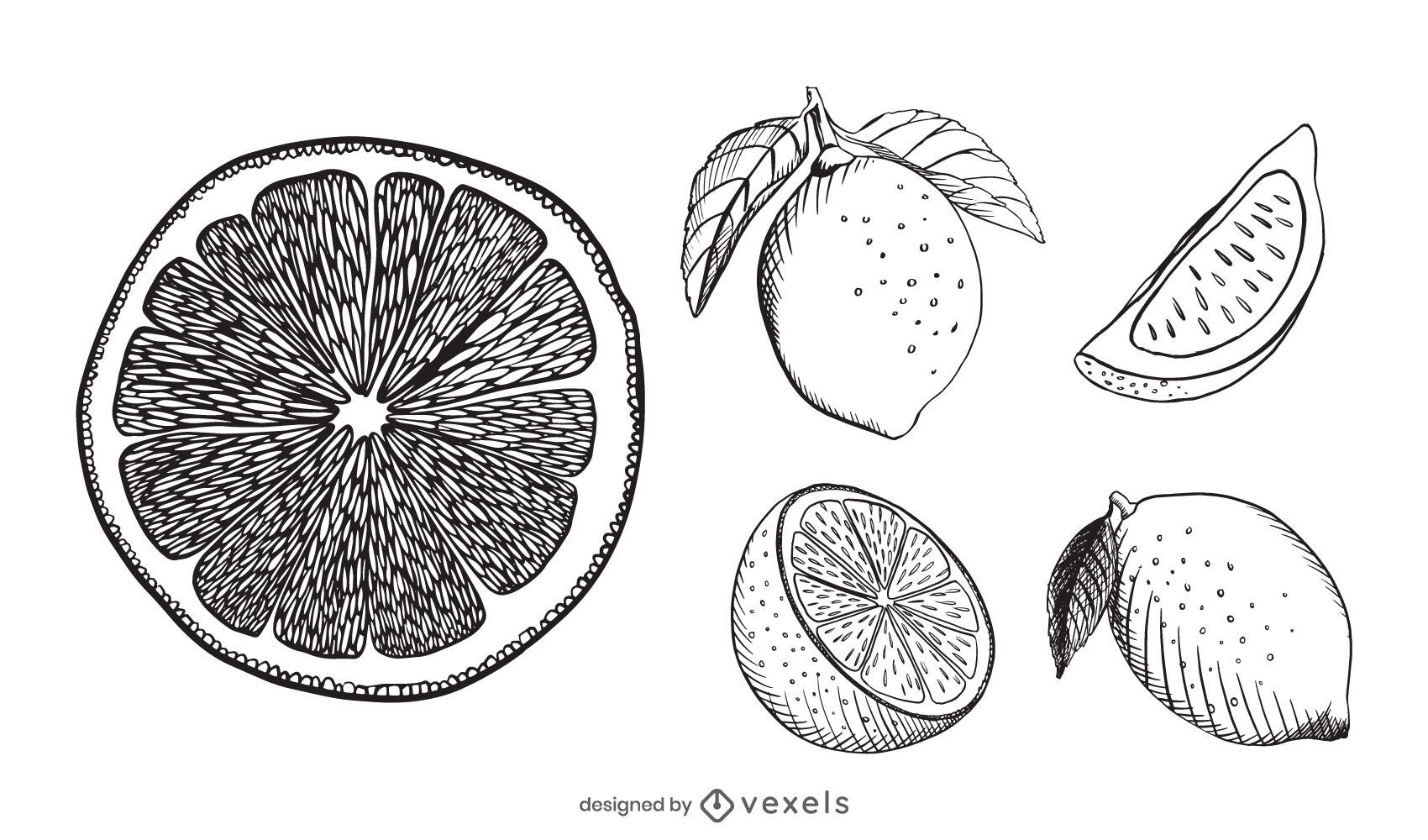 Lemon hand drawn set