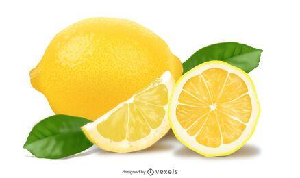 Realistisches Zitronenillustrationsdesign