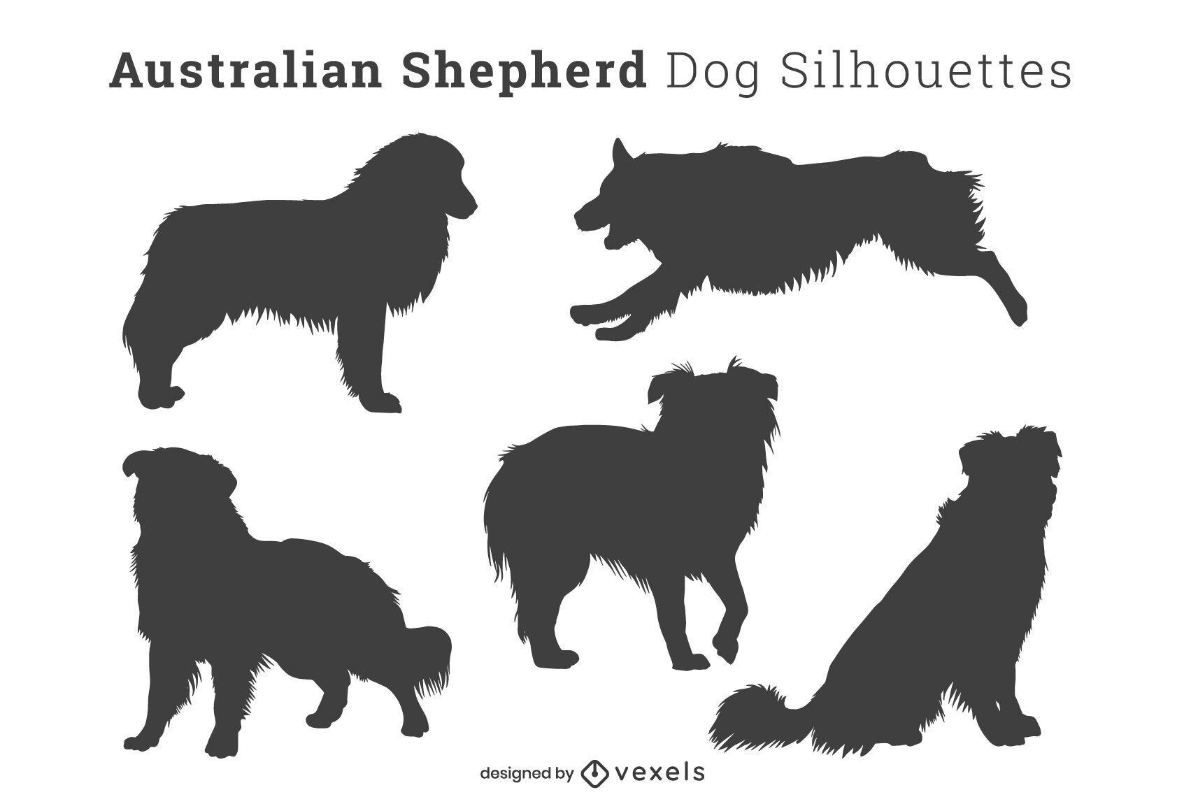 Silhuetas de cães pastor australianos