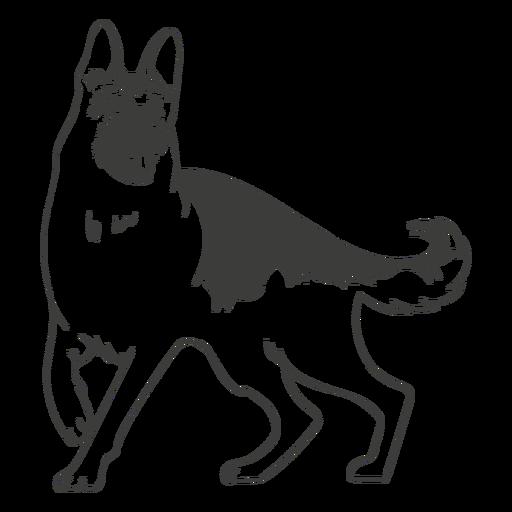 German shepherd dog hand drawn