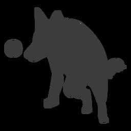 Deutscher Schäferhund spielt