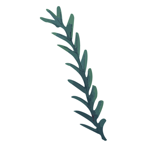 Plant green branch watercolor