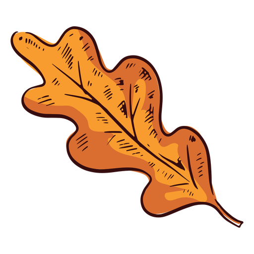 Brown rounded leaf illustration Transparent PNG