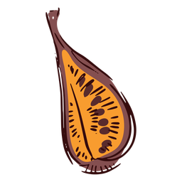 Cutted fig illustration