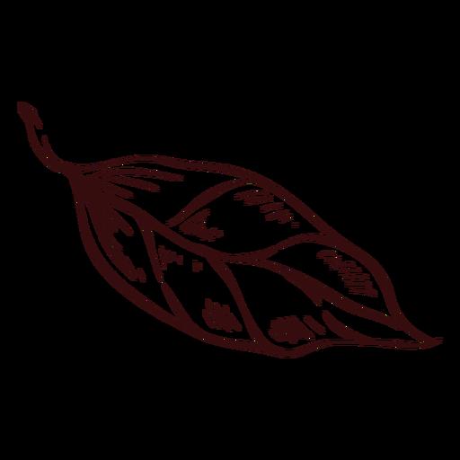 Detailed leaf hand drawn