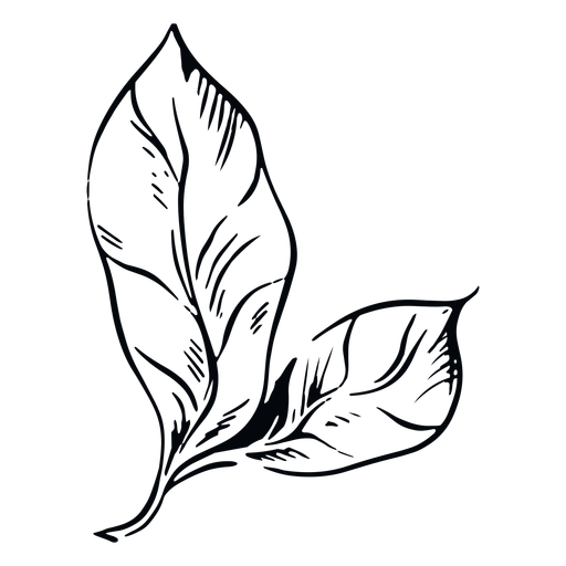 Ilustración de hoja en blanco y negro