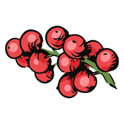 Mistletoe berries illustration