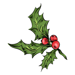 Mistletoe leaves illustration
