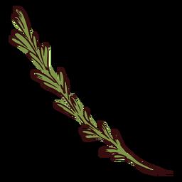 Ilustração do ramo da planta