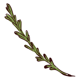 Plant branch illustration