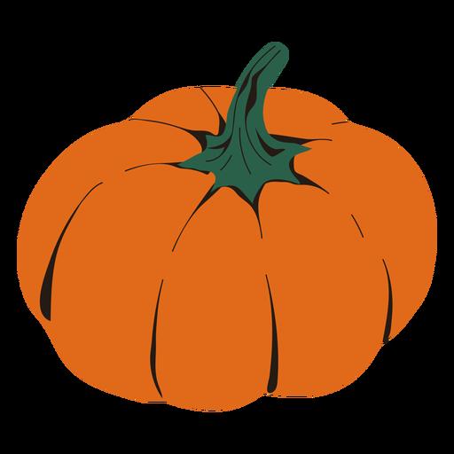 Pumpkin vegetable illustration