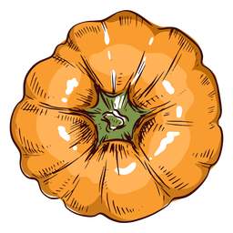 Pumpkin viewed from above illustration