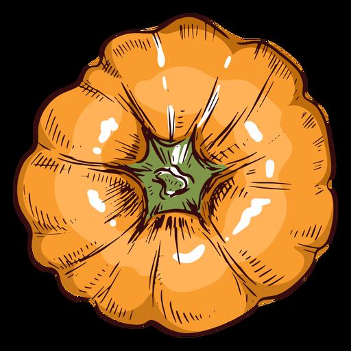 Pumpkin viewed from above illustration Transparent PNG