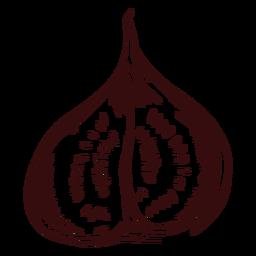 Sliced fig hand drawn