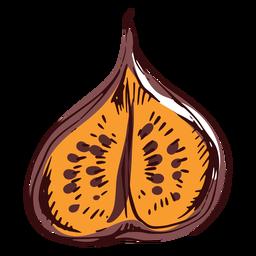 Sliced fig illustration
