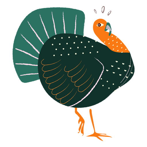 Surprised turkey hand drawn Transparent PNG