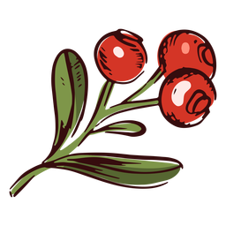 Ilustração do ramo de cranberries no Dia de Ação de Graças