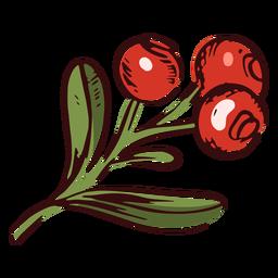 Ilustración de rama de arándanos de acción de gracias