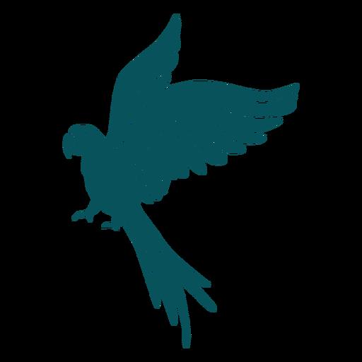 Animal parrot bird flying