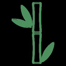 Trazo de hojas de planta corta de bambú