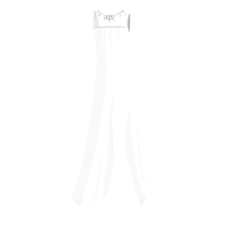 Bride wedding dress illustration