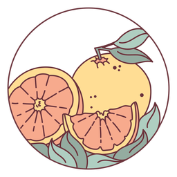 Citrus orange fruit illustration