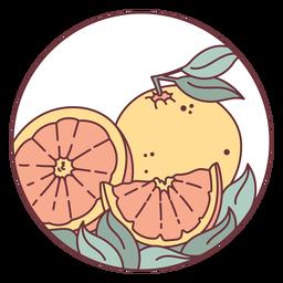 Ilustração de frutas cítricas