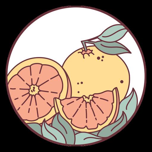 Ilustración de fruta cítrica naranja
