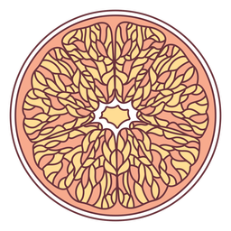 Ilustração de toranja