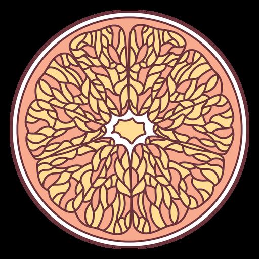 Fruit grapefruit illustration