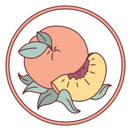 Fruit peach illustration
