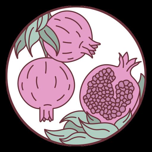 Fruit pomegranates illustration