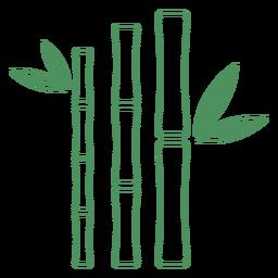 Folhagem de bambu de grama