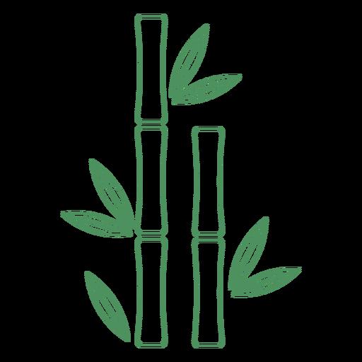 Trazo de planta de bambú de hierba