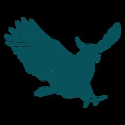 Parrot cockatiel flying