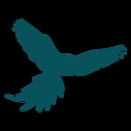 Loro guacamayo pájaro volando