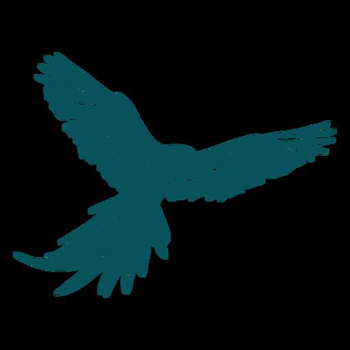 Parrot macaw bird flying