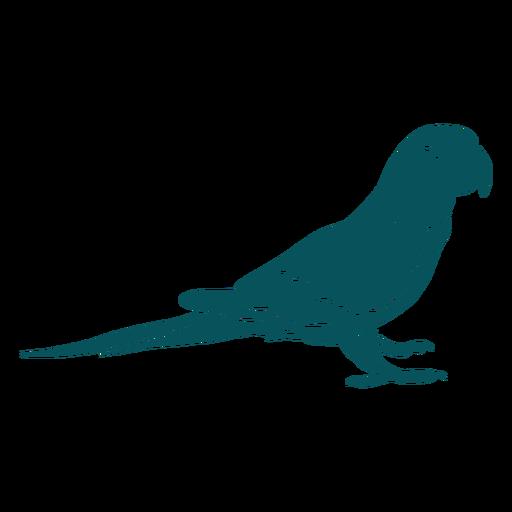Papagei Lovebird Vogel Transparent PNG
