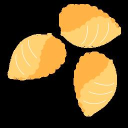 Pasta conchiglie shell plana