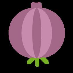 Purple onion plant flat