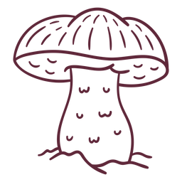 Caesar mushroom fungus stroke