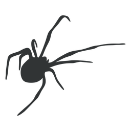 Arachnid spider animal silhouette