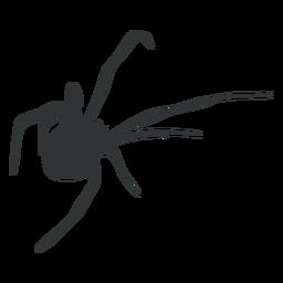 Silhueta animal da aranha aracnídeo