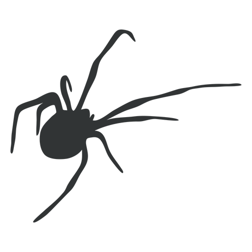 Arachnid spider animal silhouette