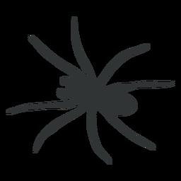 Big spider arachnid silhouette