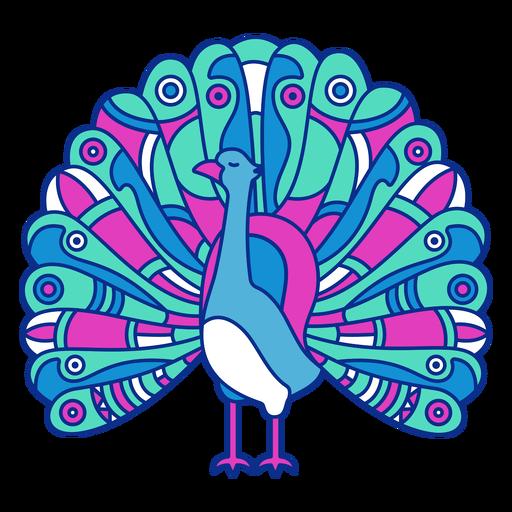 Bird peacock open feathers flat