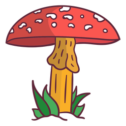 Fungus amanita mushroom illustration