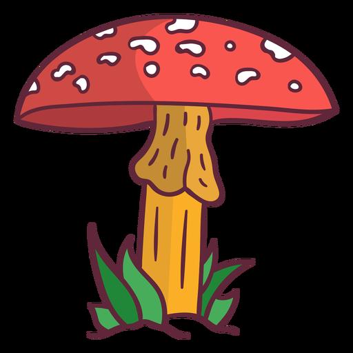 Ilustração de cogumelo Fungus amanita